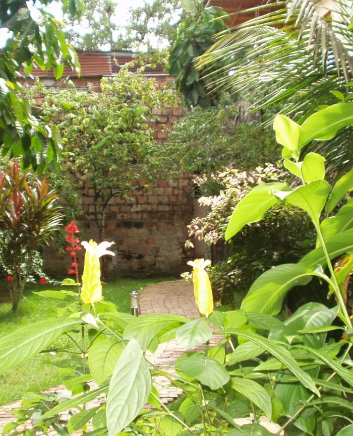 Riverside apartment garden, Iquitos, Peru