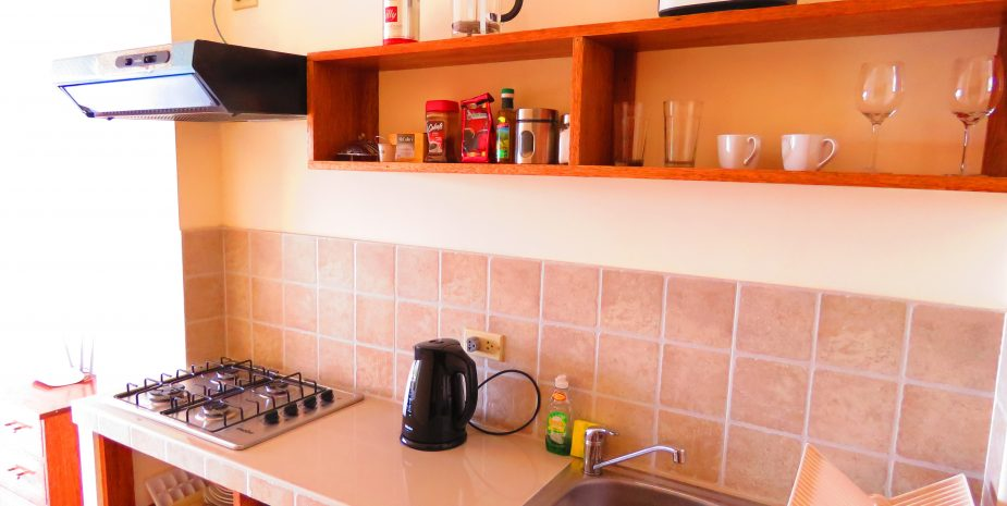 Riverside apartment 22 kitchen